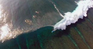 Surftrip Mentawai