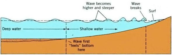 Swell y olas para surfear