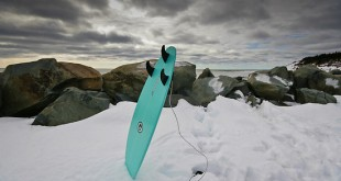 surf & nieve - Artsurfcamp
