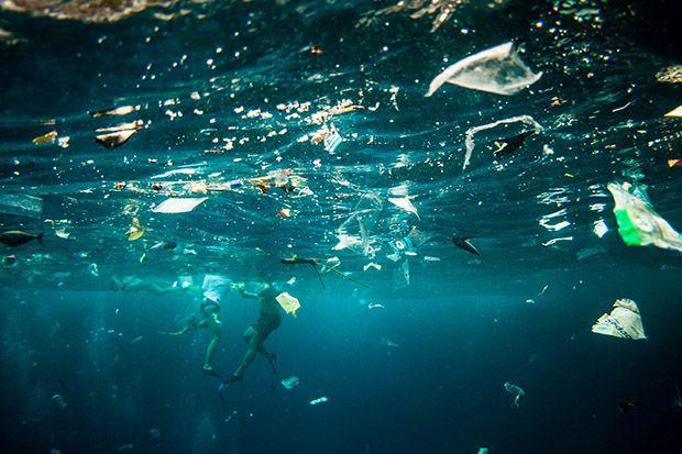 Los Plásticos No Sólo Ensucian Los Grandes Océanos